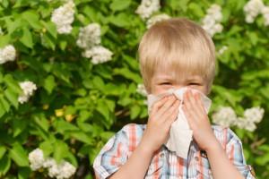 У багатьох дітей дерматит повертається в 5-7 років разом з ринітом або астмою