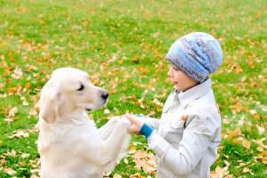 Як вибрати собаку для дитини