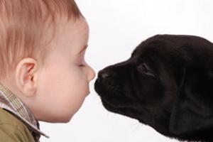Домашні тварини і ваші діти