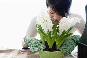 Квіти і вагітність